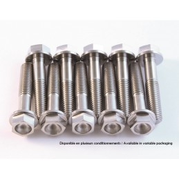SCAR Titanium Screw Kit M6x75 By 1