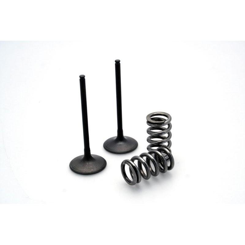 STEEL EXHAUST VALVE KIT FOR KTM SX-F250 '08-09, EXC-F250 '08-09