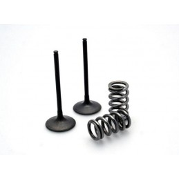 Prox titanium to steel intake valves conversion kit KTM EXC-F250