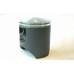 PISTON FOR RM2501989-9566.97MM