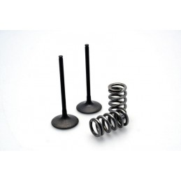EXHAUST STEEL VALVE KIT LTR450 '06-11