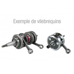 TECNIUM Crankshaft Peugeot Speedfight