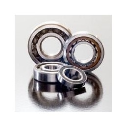 PROX NJ205 25x52x15 crankshaft bearing