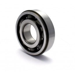 CRANKSHAFT BEARING 22 X 50 X 14