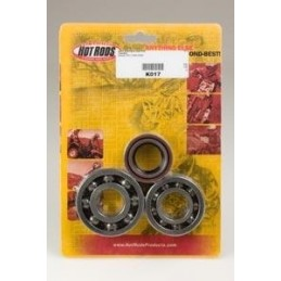 CRANKSHAFT BEARINGS AND SPI KIT FOR YFS200 BLASTER '88-07