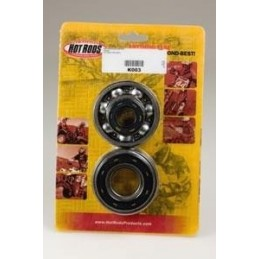 CRANKSHAFT BEARINGS AND SPI KIT FOR CR250R 92-07