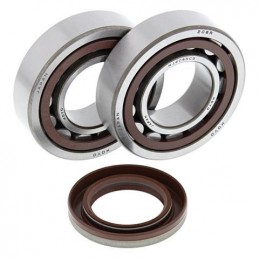 ALL BALLS Crankshaft Bearing Kit KTM SX-F450