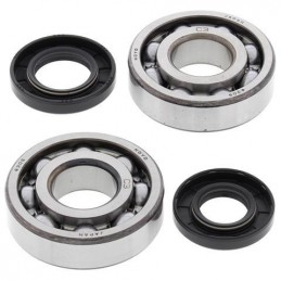 ALL BALLS Crankshaft Bearing Kit Kawasaki KX250