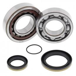 ALL BALLS Crankshaft Bearing Kit Gas Gas SX250/EXC250