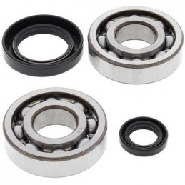 ALL BALLS Crankshaft Bearing Kit Honda CR500R