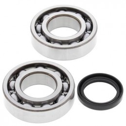 ALL BALLS Crankshaft Bearing Kit Suzuki RM-Z250