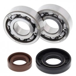 ALL BALLS Crankshaft Bearing Kit KTM Sx50