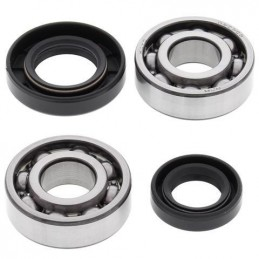 ALL BALLS Crankshaft Bearing Kit Suzuki LT50