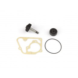Water pump repair kit for MINARELLI/YAMAHA YP 125
