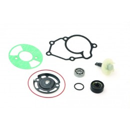WATER PUMP REPAIR KIT FOR YAMAHA X-MAX 125, MBK SKYCRUISER 125