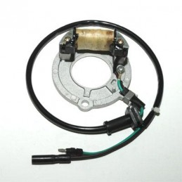 ELECTROSPORT Stator Honda CR80R/85R/RB